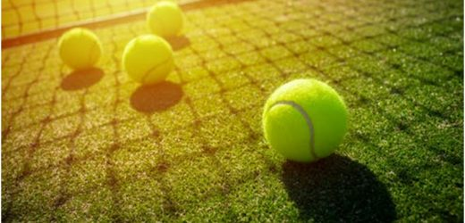 How much can the tennis court repair cost?
